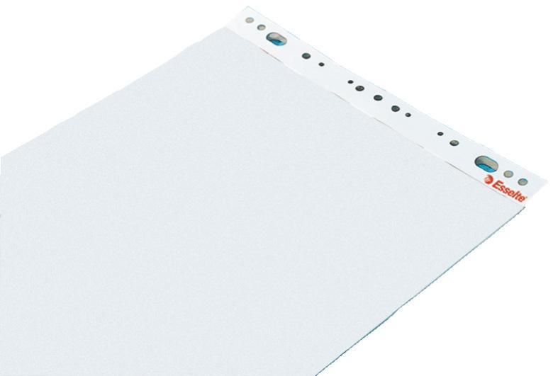 Blädderblock ESSELTE Olinjerat, 60x84cm, 5/fp