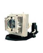 InFocus - Projektorlampa - 3000 timme/timmar (standard läge) /
