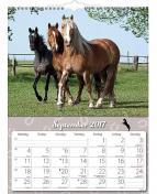Väggkalender Häst - 1776