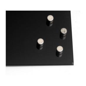 Magnet NAGA Super Strong Ø=10mm 4/FP