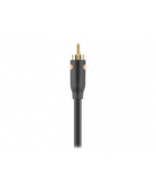 Belkin Essential Series Digital Coaxial Cable - Digital