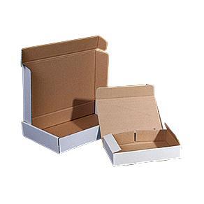 Självlåsande låda 225x145x42 v