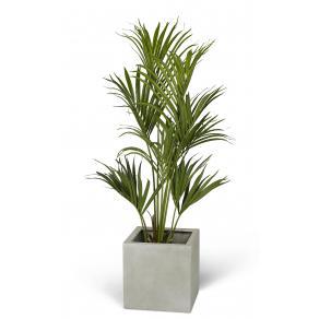 Konstväxt kentiapalm 120cm